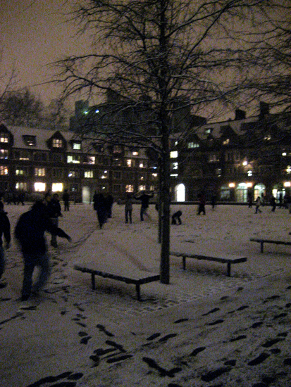 Snowball Fight in the Quad